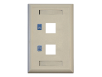 Tripp Lite Dual Outlet RJ45 Universal Keystone Face Plate / Wall Plate