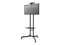 Newstar Fixation écrans PLASMA-M1700E