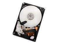HGST - INT HDD MOBILE CONSUMER Hitachi Ultrastar A7K2000 HUA722010CLA3300A39289