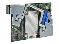 HPE Smart Array P244br/1G FBWC