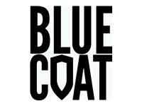 Blue Coat Cloud Services Mobile Device Security