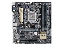 ASUS Z170M-PLUS - carte-mère - micro ATX - Socket LGA1151 - Z170