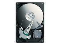 Seagate Momentus ST90250N1A1AS