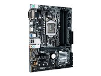 ASUS PRIME B250M-A - Motherboard - micro ATX
