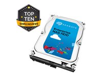 Seagate Enterprise NAS HDD ST2000VN0001