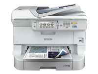 Epson WorkForce C11CD45301