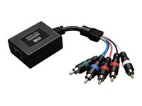 Tripp Lite Component Video with Stereo Audio Over Cat5/Cat6 Remote Extender - Video/audio extender - up to 699 ft