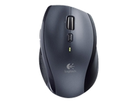Logitech Wireless Mouse 910-001949