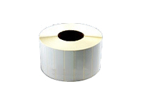 Wasp Thermal Transfer - 2 in x 4 in (12 roll(s) x 1250) labels - for Wasp WPL308