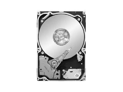 Seagate Constellation.2 ST9250610NS