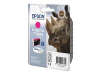 EPSON  T1003C13T10034010