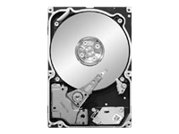 Seagate Constellation ST9250610NS