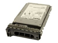 ORIGIN STORAGE DELL-146SAS/15-S6