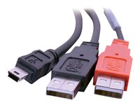 Image of C2G 2m USB 2.0 One Mini-B Male toTwo A Male Y Cable - USB cable