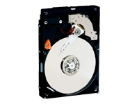 WD Blue WDBAAX5000ENC