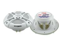PYLE Hydra PLMRX67
