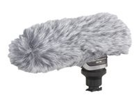 Canon DM-100 - microphone