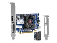 Hewlett Packard - Hp Amd Radeon Hd 7450 Dp (1Gb) P