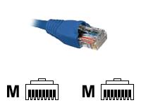 Nexxt - Patch cable - RJ-45 (M)