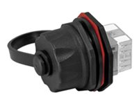 CONECTOR MACHO CAT.6 PARA CABLE SOLIDO (CJT 50 PLUGS)