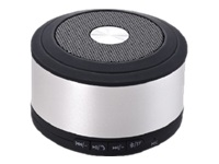 DLH DY-HP2780S - haut-parleur - pour utilisation mobile - sans fil