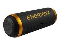 Enermax EAS01