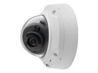 AXIS M3024-LVE Network Camera Netværksovervågningskamera kuppel