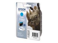 EPSON  T1002C13T10024020