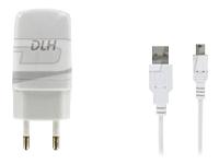 DLH Energy Chargeurs compatibles  DY-AU1873