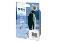 Epson T5595