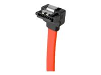 CUC câble SATA - 50 cm