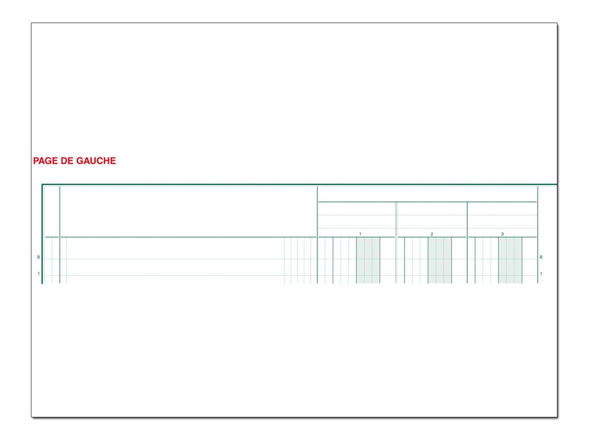 Exacompta - Registre à colonnes - 10 colonnes - 320 x 250 mm - portrait