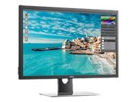 Dell Ecrans UP3017