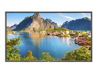 Nec MultiSync LCD 60003929