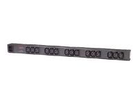 APC Basic Rack PDU Zero U - unité de distribution d'alimentation