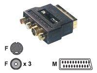 MCL Samar CG-750HQ - adaptateur audio/vidéo - S-Vidéo / vidéo composite / audio