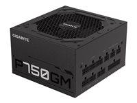 Gigabyte P750GM - Power supply (internal) - ATX12V 2.31