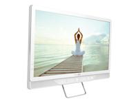 Philips Moniteurs LCD 19HFL4010W/12