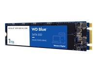 WD Blue 3D NAND SATA SSD WDS100T2B0B - Unidad en estado sólido - 1 TB