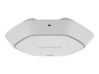 Linksys Business LAPN300 Trådløs forbindelse Wi-Fi 2.4 GHz