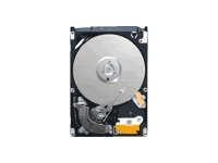 Seagate Momentus 5400.6 ST9500325AS