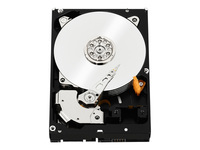 WD Black Performance Hard Drive WD5003AZEX - disque dur - 500 Go - SATA 6Gb/s