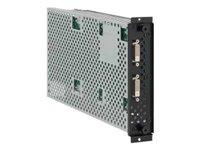 NEC  DVI Daisy Chain100012311