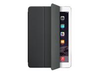 Apple iPad MGTM2ZM/A