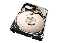 Seagate Constellation ST91000640NS