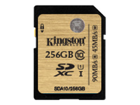 Kingston Produits Kingston SDA10/256GB