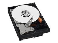 DD Int NEW PULL 3.5 250GB WD 7200RPM