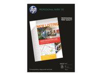 HP  Professional 120 mattQ6594A