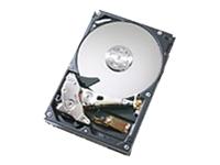HGST Deskstar T7K500 HDT725050VLA380