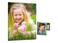HP Everyday Photo Paper - papier photo brillant - 100 feuille(s)